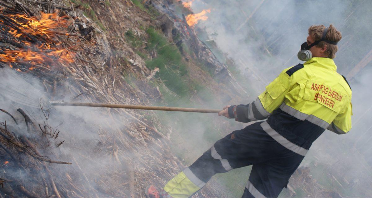 Stor skogbrannfare – uaktsomt å gjøre opp ild – stengte grill- og bålplasser